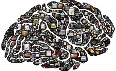 brain-954822_640